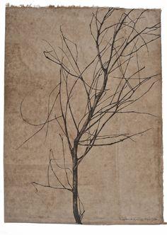 Sarah  Horowitz - Gleditsia I, 2012,   Drawing sumi ink on walnut dyed mitsumata paper   21.75 x 16 inch