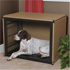 Mr. Herzhers Side Entry Dog Crate In Medium Brown - Extra Large Size