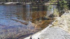#järvi #lake side #Finland