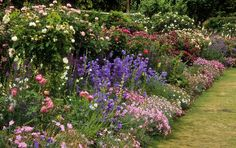 English Flower Border