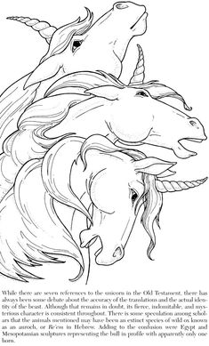 Welcome To Dover Publications From Unicorns Coloring Book