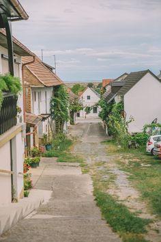 Urlaub am Neusiedler See im Burgenland - die Sonnenseite Österreichs Hotels, Salzburg, Austria, Photo Wall, Landscape, World, Dna, Places, Heart