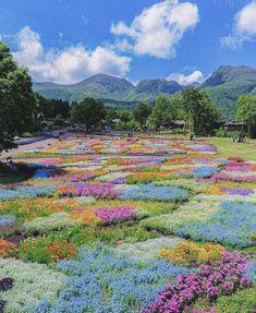 Nature Aesthetic, Flower Aesthetic, Travel Aesthetic, Summer Aesthetic, Kurokawa Onsen, Beautiful World, Beautiful Places, Photocollage, Pretty Pictures