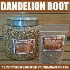 herb-dandelion-root