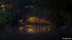 Magic Light at Danube Delta by Dragos Pop