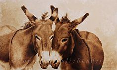 """Confidentially Speaking (donkeys) by julie bender Pyrography and coffee ~ 12.5"""" x 21"""""""