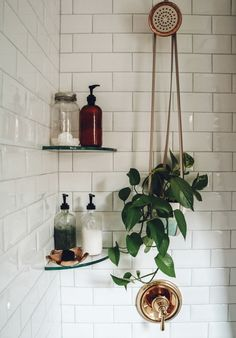 30 Days To A Toxin-Free Home Nesting With Grace Swap Out Harsh, Chemical-Laden Beauty And Home Cleaning Products With These Solutions Made With Naturally Derived Ingredients And Essential Oils. Deco Addict, Dream Apartment, White Studio Apartment, Small Apartment Living, Bathroom Interior, Eclectic Bathroom, Industrial Bathroom, House Rooms, Bathroom Inspiration