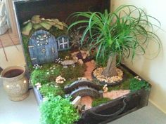 Fairy garden in old suitcase