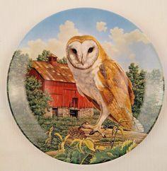 Stately Owls Set of 4 Porcelain Collector Plates Jim Beaudoin Preserv Birds Prey   eBay