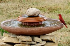 Fall is For the Birds! 7 DIY Bird Baths | The Garden Glove