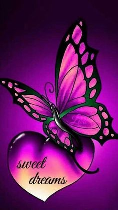 Your Friends Annette & Willine! Good Night Greetings, Good Night Messages, Good Night Quotes, Good Night Image, Good Morning Good Night, Morning Wish, Butterfly Wallpaper, Butterfly Art, Good Night Blessings