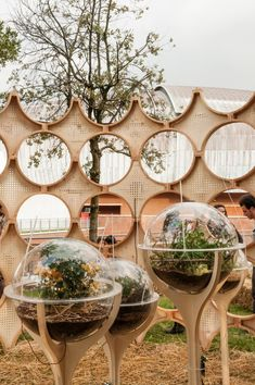 Six biospheres each feature different types of ecosystems and insects. Image Courtesy of OFL Architecture