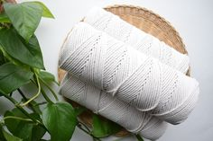 Wow picks! 3ply cotton macrame rope, twisted macrame cord, macrame rope, cotton cord, 3 strand cotton rope, cotton macrame rope, cotton macrame cord at $32.40 Choose your wows. 🐕 #MacramePlantHanger #macrame #DiyMacrame #TwistedRope #CraftKit #MacrameBook #5mmRope #MacramePattern #MacrameRope #MacrameCord 3 Strand Twist, Rope Twist, Macrame Supplies, Macrame Art, Macrame Patterns, Cotton Rope, Craft Kits, Knitted Hats, Cord