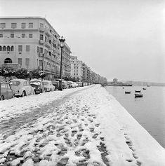 "MOMus on Instagram: ""[ΠΑΓΚΟΣΜΙΑ ΗΜΕΡΑ ΧΙΟΝΙΟΥ] 17 Ιανουαρίου 2021, Παγκόσμια Ημέρα Χιονιού ❄️ ----------- *Φωτογραφία: Σωκράτης Ιορδανίδης, Στιγμιότυπο από τη…"" Thessaloniki, Macedonia, Paris Skyline, Greece, Snow, Travel, Outdoor, Instagram, Greece Country"