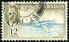 """Barbados  1950 Scott 222 12c olive & aquamarine """"Flying Fish"""""""