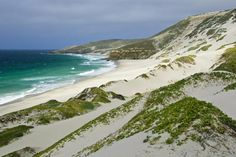 Explore Channel Islands National Park, California - TripBucket