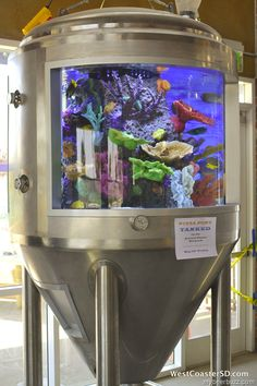 """Pizza Port Fermentation Fish Tank To Appear on """"Tanked"""" on Animal Planet 5/10"""