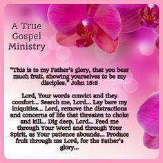 """""""This is to my Father's glory, that you bear much fruit, showing yourselves to be my disciples."""" John 15:8 Lord, Your words convict and they comfort... Search me, Lord... Lay bare my iniquities... Lord, remove the distractions and concerns of life that threaten to choke and kill... Dig deep, Lord... Feed me through Your Word and through Your Spirit, as Your patience abounds... Produce fruit through me Lord.. #godsword #gospel #jesus #jesussaves #preach #testify #pray #atruegospelministry"""