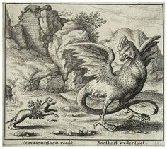 fable of ´The Basilisk and the Weasel´ (Dutch etching)
