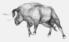 Check out some awe-inspiring drawings by Marcus James which are made up of continual contours based on studies of Iberian bulls in Corals and bullfights in