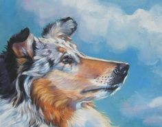 Rough Collie art print CANVAS print of LA Shepard painting 11x14 dog art. $39.99, via Etsy.