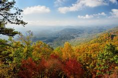 Come for a Tournament, Stay for the Leaves: Fall at Rocky Top Sports World