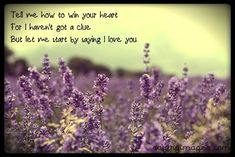 Tell me how to win your heart, for I haven't got a clue, but let me start by saying, I love you. The post Tell me how to win your heart, for I haven't g… appeared first on Best Pins for Yours. Cute Love Quotes For Him, I Love You Quotes, Inspirational Quotes About Love, Love Yourself Quotes, Say I Love You, Cute Quotes, Best Quotes, My Love, Most Popular Quotes