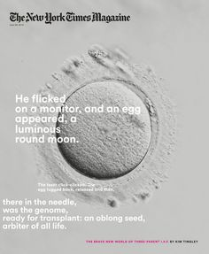 A final moment in Kim Tingley's cover story about three-parent I. prompted the idea to put a microscopic image of an egg on the cover. New York Times News, New York Times Magazine, Ny Times, Brave New World, Magazine Editorial, Communication Design, Stem Cells, Graphic Design Typography