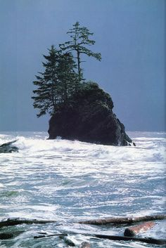 Beautiful photo of a island in the ocean. The blonde in the pic.