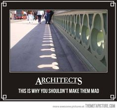 Never mess with an architect... - The Meta Picture