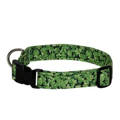 Elmou0027s Closet Shamrock Field Dog Collar