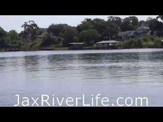 River Dolphin Pod, From Exchange Club Island - http://www.nopasc.org/river-dolphin-pod-from-exchange-club-island/