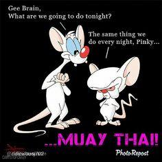 Minus et Cortex - Un petit peu de moi. Minus Et Cortex, Gemini, Retro, Funny Memes, Hilarious, It's Funny, Morning Cartoon, Classic Cartoons, Humor
