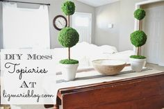 DIY Moss Topiaries - Use items from Dollar Store to create your own custom indoor fake plant.