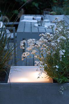 Angeknipst   bildschoenesdesign Aquarium, Exterior, Landscape, Lighting, Inspiration, Landscaping Ideas, Gardening, Summer Diy, Backyard Patio