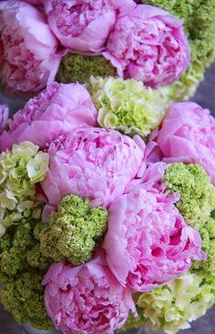KellysFlowers_Pink Peony and Green Hydrangea Bridal Bouquet.jpg