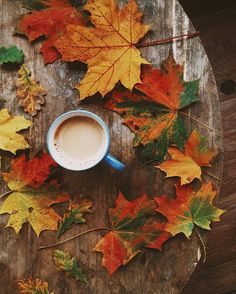 "autumncozy: ""By aizamagic """