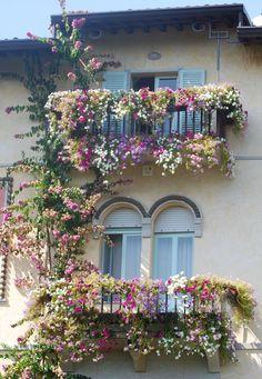 Les jardinières sont l'outil de base à tous les beaux balcons ! #jardinières #balcon #fleurs