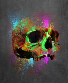 Shamanic Skull  Digital Art  -  Filippo Bertoncello