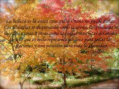 La belleza es la única cosa que el otoño no puede dañar. Las filosofías se dispersarán como la arena, las creencias se sucederán unas a otras como las hojas marchitas del otoño, pero lo que es bello representa un goce para todas las estaciones y una posesión para toda la eternidad. Oscar Wilde.