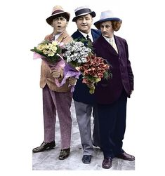 The Three Stooges Official Merchandise. Shop now for Valentines Day. This 6 foot standee is a great alternative to flowers for the Stooge fan in your life.