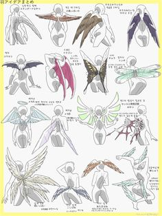 Drawing Tips Ravage wings much lololololololololololololol Drawing Base, Manga Drawing, Drawing Sketches, Art Drawings, Drawing Tips, Sketching, Manga Art, Wie Zeichnet Man Manga, Poses References