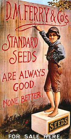 D.M. Ferry & Co's Standard Seeds Are Always Good. None Better