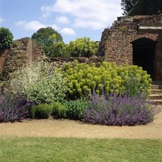 A section of the Contemporary Heritage border at Eltham Palace Landscape Design, Garden Design, Eltham Palace, Reading At Home, English Heritage, Seasons Of The Year, Private Garden, Topiary, Hunters