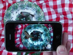 Design: English Hedgerow Augmented Reality Plate http://designmuseum.org/exhibitions/2013/designs-of-the-year-2013