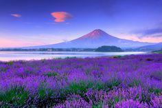 河口湖 Kawaguchi ko