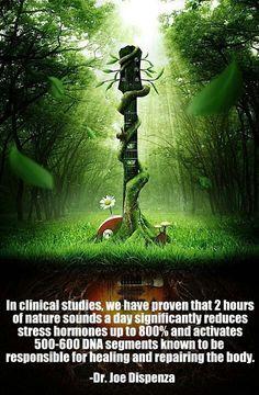 Nature Sounds heal. balancedwomensblog.com