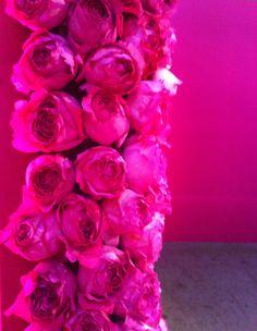 Pink roses #PiagetRoseDay @Piaget Huewe Huewe Huewe Huewe #PiagetRose #Paris #Pink