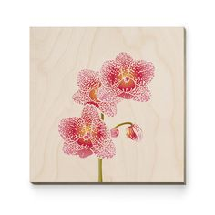 https://www.bespo.co.uk/gelliedesign/store/products/orchid-wood-print/View Larger Image