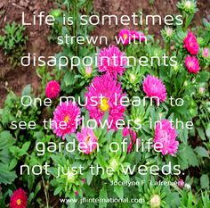 One must learn to see the flowers in the garden of life, not just the weeds.